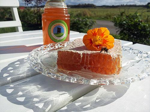 Nyskördad honung från Bohuslän